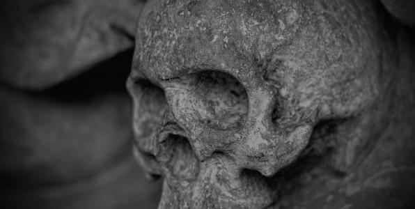 Hertfordshire Skip Hire 10 Most Weirdest Items Human skull bones